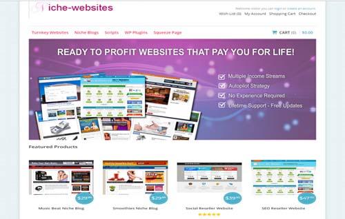 Niche-websites.info