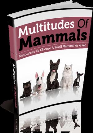 Multitudes Of Mammals