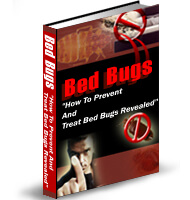 How to Stop Bed Bugs in their Sleep!