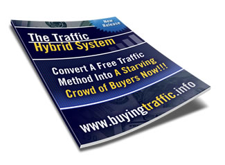 How Amazing is The Traffic Hybrid System?