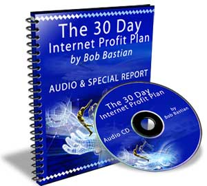 The Amazing 30 Day Internet Profit Plan