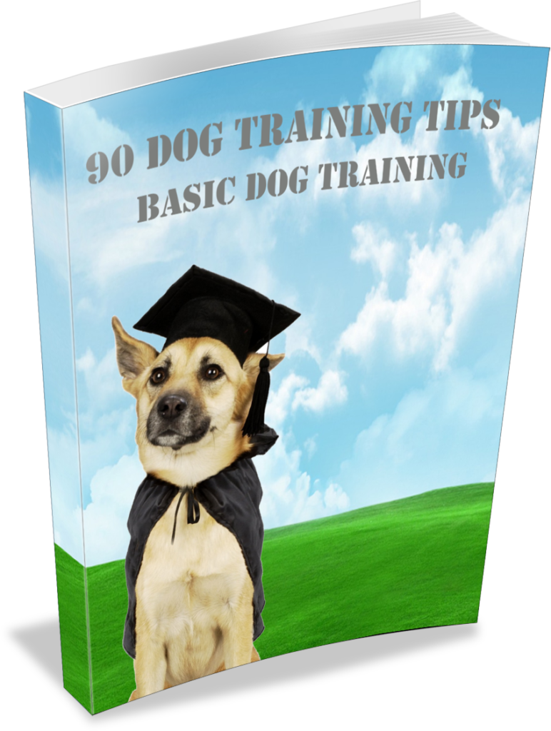 What Will I Get From 90 Dog Training Tips?